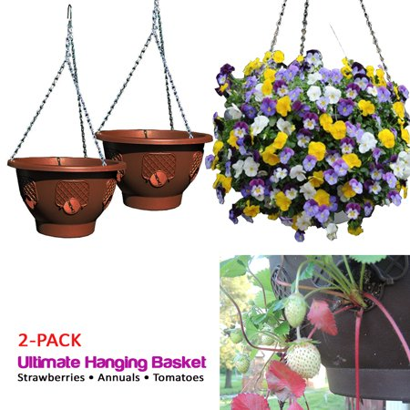 Ultimate Hanging Baskets - Strawberry, Tomato, Flower, and Herb Outdoor Planters - Use Garden Pots For Growing Plants Outside On A Deck, Fence, or Balcony (2,