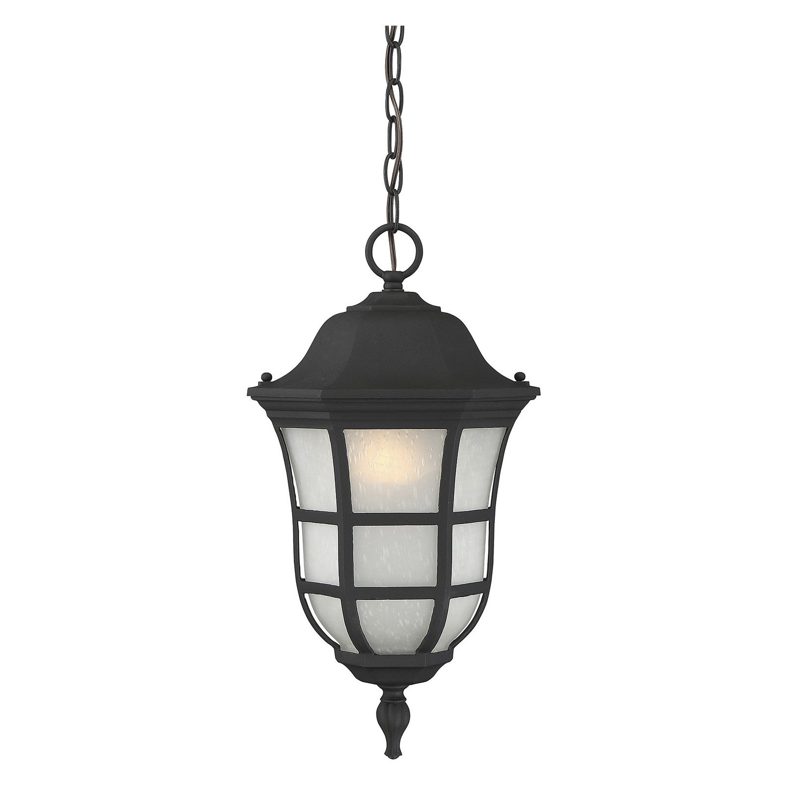 Savoy House Ashburn 5-482-BK Outdoor Hanging Lantern by Savoy House