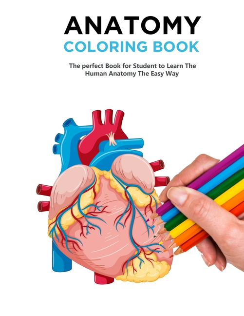 - Anatomy Coloring Book : The Best Anatomy Coloring Book And Physiology  Workbook To Help You Learn The Easy Way (Paperback) - Walmart.com -  Walmart.com