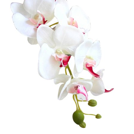 Silk Artificial Phalaenopsis Orchid Flower Stem Bouquet Party Home Garden Décor (White)