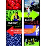 Learning Zonexpress Energy In And Energy Out Posters, Set - 2