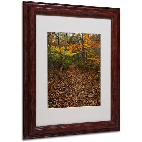 """Trademark Fine Art """"Late Autumn Hike"""" Matted Framed Art by Kurt Shaffer, Wood Frame"""