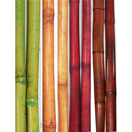 Natural Bamboo Poles (GreenFloralCrafts Decorative Bamboo Poles, 57 Inches (Nearly 5 FT) Tall, Set of 8 Bamboo Sticks )