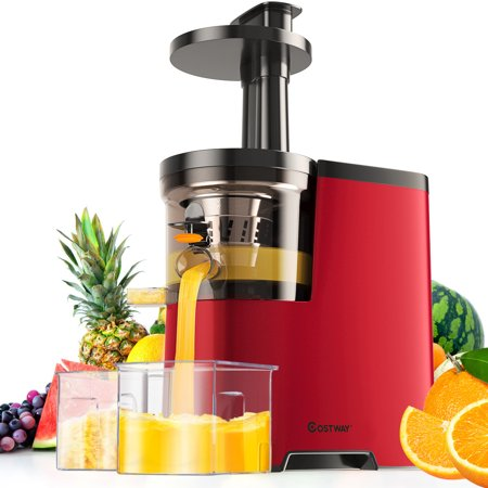 Costway Slow Masticating Juicer Cold Press Extractor Maker Fruit Vegetable w/
