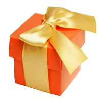 BalsaCircle 100 Wedding Party Cute Favors Gift Boxes with Lids - Party Candy Gifts Decorations Supplies