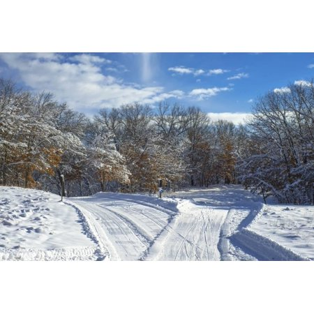 Classic Cross Country Ski - Criss Crossing Cross Country Ski Trails Print Wall Art By Steven Gaertner