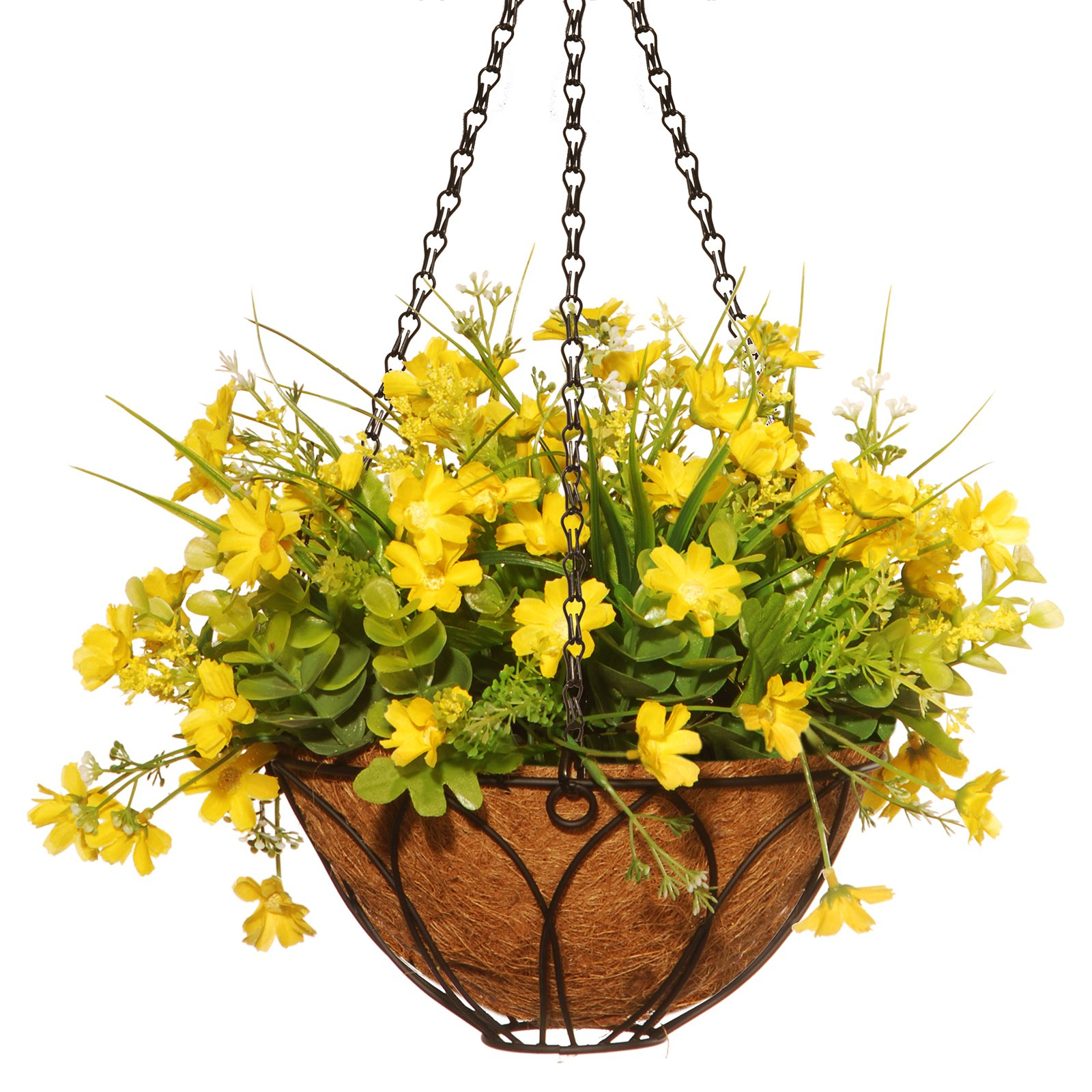 "13"" Dancing Daisy Hanging Basket"