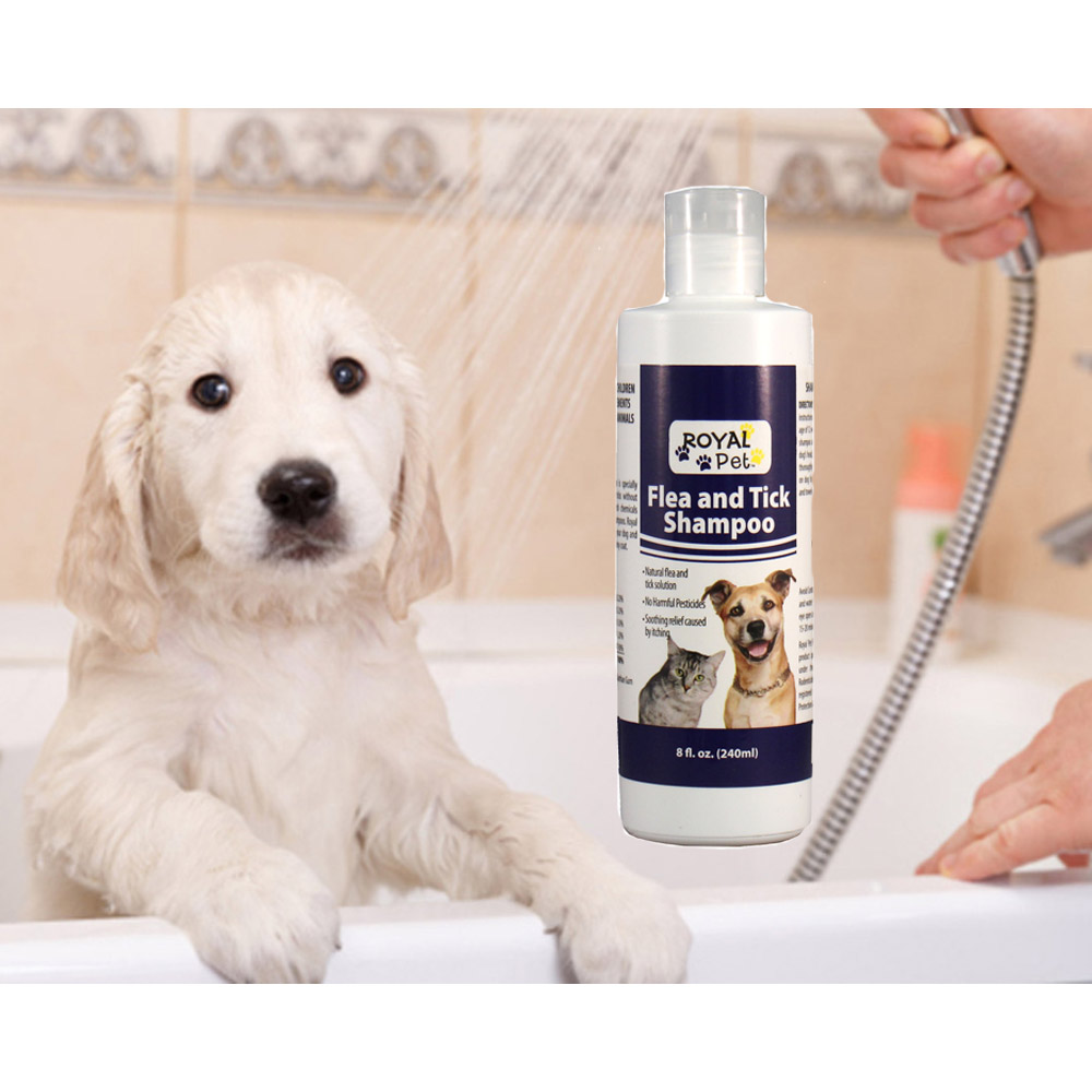 Royal Pet Natural Flea & Tick Shampoo for Dogs and Cats, 8 oz