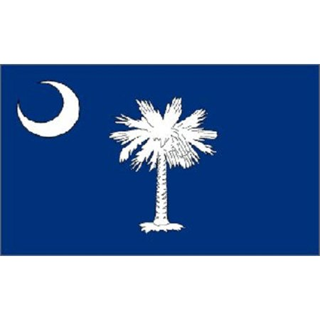 South Carolina Flag SC State Banner Pennant 2x3 Foot New 24 by 36 Inches](Carolina Panthers Pennant)