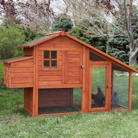 Boomer   George Deluxe 4 Chicken Coop With Run