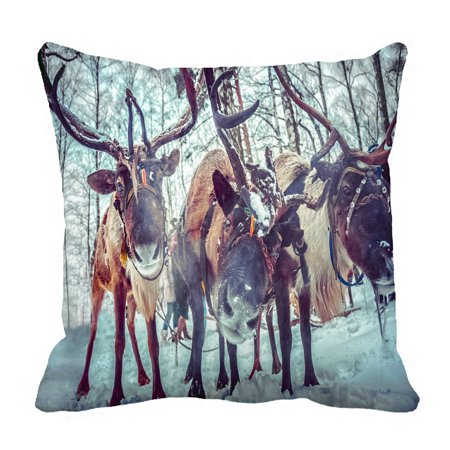 PHFZK Winter Pattern Christmas Reindeer Deers Pillowcase Throw Pillow Cushion Cover Two Sides Size 18x18 inches ()