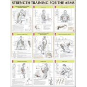 Strength Training For The Arms