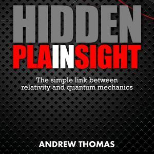 Hidden In Plain Sight - Audiobook
