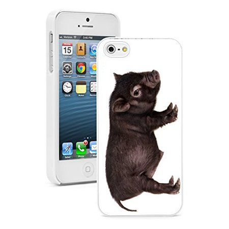 Baby Pot Belly (Apple iPhone 6 6s Hard Back Case Cover Baby Potbellied Hog Pig (White) )