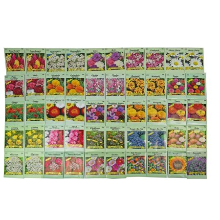 Set Of 50 Assorted Valley Green Flower Seed Packets Flower Seeds In Bulk 20 Varieties Available