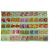 Set of 50 Assorted Valley Green Flower Seed Packets! Flower Seeds in Bulk - 20+ Varieties Available!