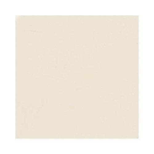 Swanstone 61W x 22D in. Ellipse Solid Surface Vanity Top