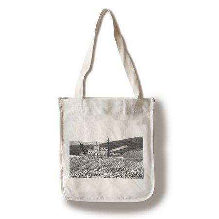 Fairbanks, Alaska - Exterior View of the F.E. Co. Gold Dredge (100% Cotton Tote Bag - Reusable) ()