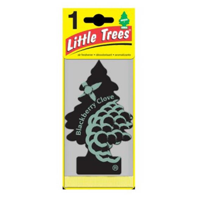 Car Freshner U1P-17343 Blackberry Clove Air Freshener - Sage Green & Black, Pack Of 24 - image 1 of 1
