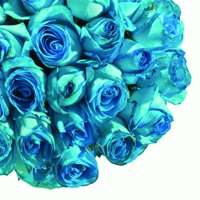 "Natural Fresh Flowers - Tinted Turquoise Roses, 20"", 75 Stems"