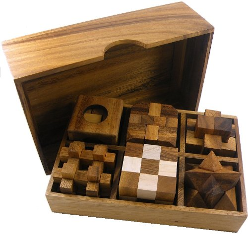 6 Wooden Puzzles Gift Set by