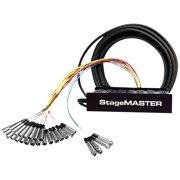 Pro Co StageMASTER SMC Series 28-Channel Snake 100 ft.