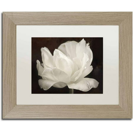 3 Arm Tulip - Trademark Fine Art 'White Tulip III' Canvas Art by Cora Niele, White Matte, Birch Frame