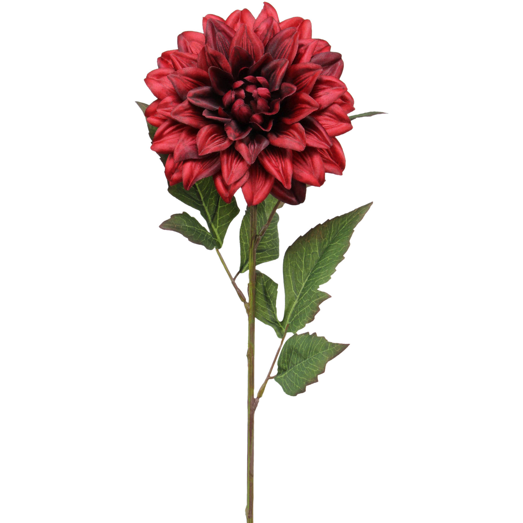 "Flower Shop Collection 27"" Dahlia X1 with 3 Leaves, 12-Pack"