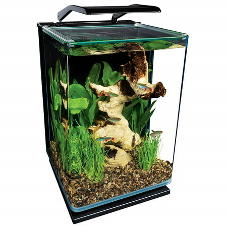 MarineLand 5-Gallon Portrait Glass LED Aquarium Kit - Fish Glasses
