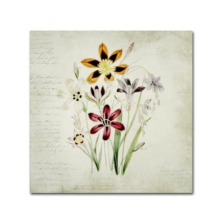 Trademark Fine Art Wild Flowers One Canvas Art By Marcee Duggar