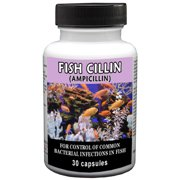 Thomas Labs Fish Cillin Fish Antibiotic Medication, 30 Count