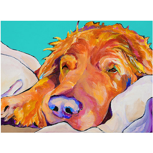 "Trademark Art ""Snoozer King"" Canvas Art by Pat Saunders-White"