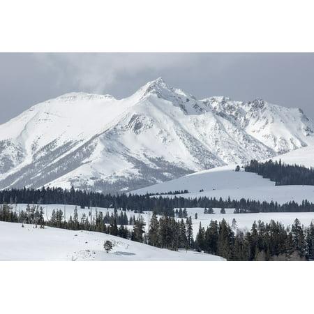 Canvas Print Electric Peak Snow Mountains Gallatin Range Stretched Canvas 10 x (Columbia Gallatin Range)