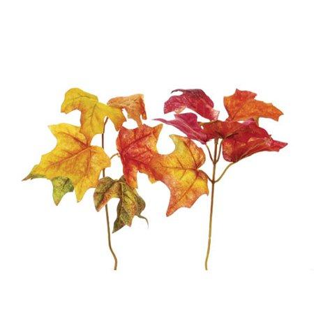 Assorted Leaves - Darice Fall Leaf Picks Maple Leaves 2 Assorted