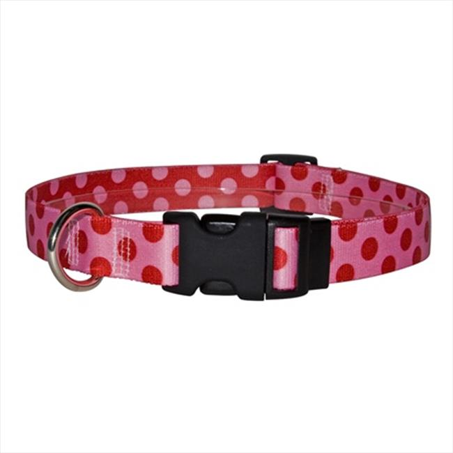 Yellow Dog Design VP103L Valentine Polka Dot Standard Collar - Large