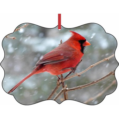 Cardinal Snow - Ornament Cardinal - Red Cardinal Bird in the Snow - Elegant Aluminum SemiGloss Christmas Ornament Tree Decoration - Unique Modern Novelty Tree Décor Favors