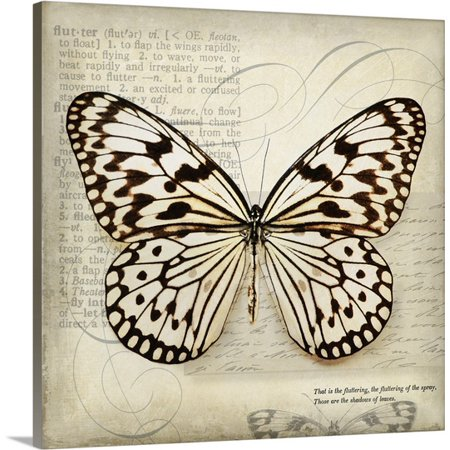Great Big Canvas Amy Melious Premium Thick Wrap Canvas Entitled Butterflies Script Iii   Mini