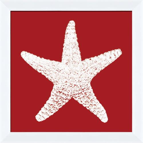 PTM Images Coral I Framed Graphic Art