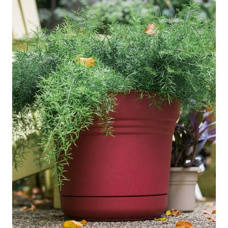 Ivy Saucer - Bloem Saturn Planter with Saucer 12