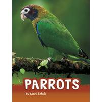 Animals: Parrots (Paperback)
