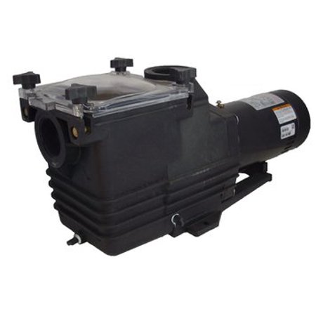 230v Swimming Pool Pump (3 hp 3450 RPM 230V Energy Efficient Inground Swimming Pool Pump #)