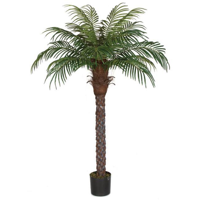 Autograph Foliages P-150560 6 ft. Date Palm, Green