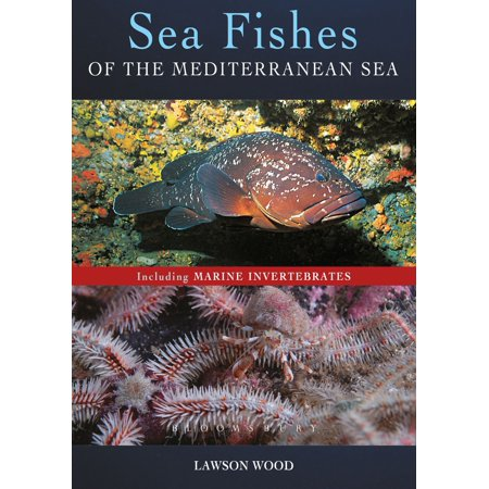 Sea Fishes Of The Mediterranean Including Marine Invertebrates - eBook