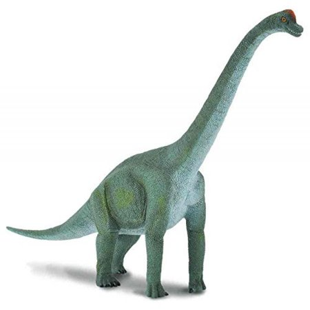 CollectA Prehistoric Life Brachiosaurus Toy Dinosaur Figure - Paleontologist Approved Hand Painted Model (Life Like Dinosaur)