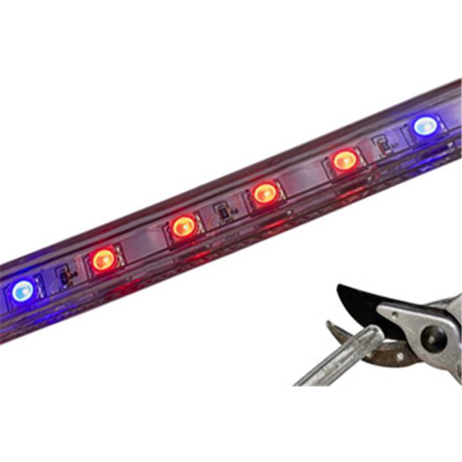 BirdDog CC-50-RB5.5 18.04 ft. Brilliant Custom Cut 120V SMD-5050 LED Strip Plant Grow Light