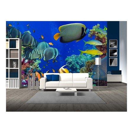 wall26 - Colorful underwater offshore rocky reef with coral and sponges and small tropical fish swimming by in a blue ocean - Removable Wall Mural   Self-adhesive Large Wallpaper - 66x96 inches