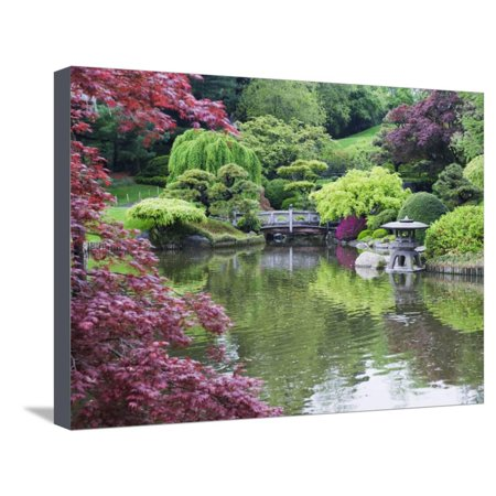 Japanese Garden, Brooklyn Botanical Garden, Brooklyn Stretched Canvas Print Wall Art By Christian Kober (Botanical Gardens Brooklyn Halloween)