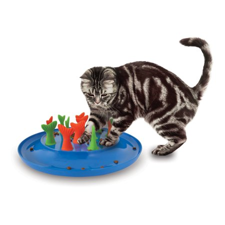 Petmate jackson galaxy go fish cat toy for Jackson galaxy pet toys