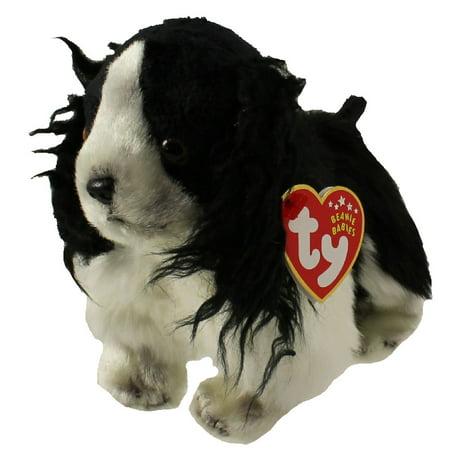 TY Beanie Baby - FROLIC the Spaniel Dog (6 (Frolic Horse)