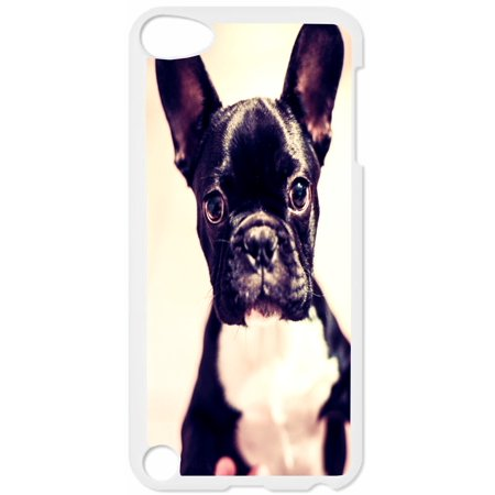 French Bulldog Puppy Hard White Plastic Case Compatible with the Apple iPod Touch 5th Generation - iTouch 5 Universal (Itouch 2 Generation)